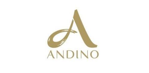 Andino